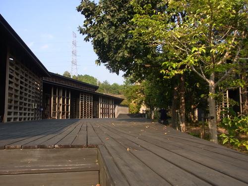 人工林の理想の形ともいえる伊勢神宮の宮域林
