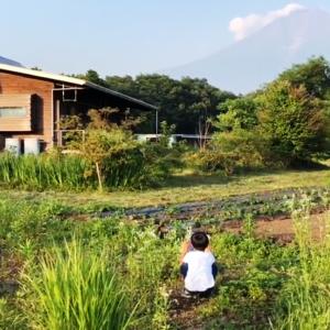 静岡県富士宮市、現在建築中の現場からのお届けです。