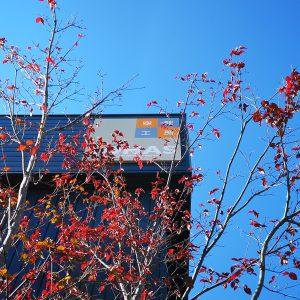 富士市で注文住宅木の家は空間工房LOHAS