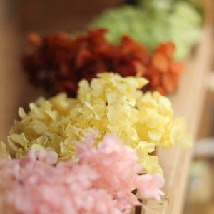 富士市木の家にあう花