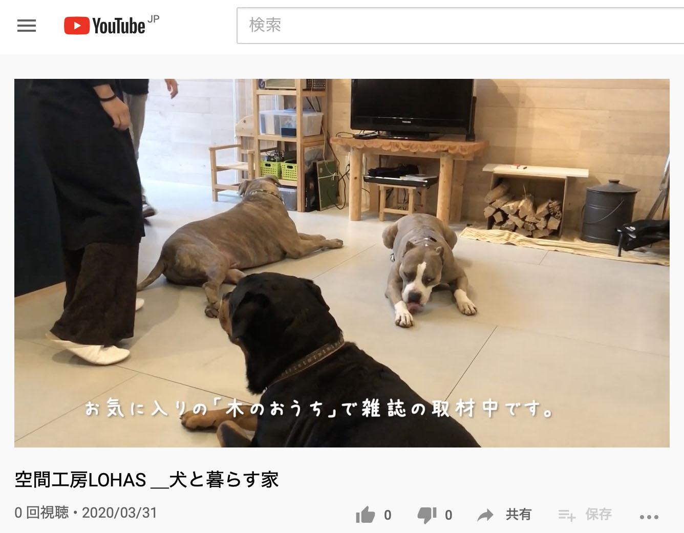 犬と暮らす家
