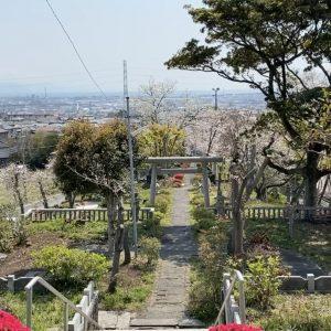 木の宮神社、木の家ロハス