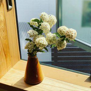 庭の花を飾る春、富士市木の家
