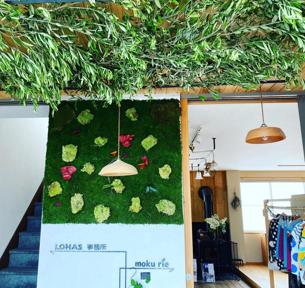 青々としたオリーブを飾る、富士市工務店