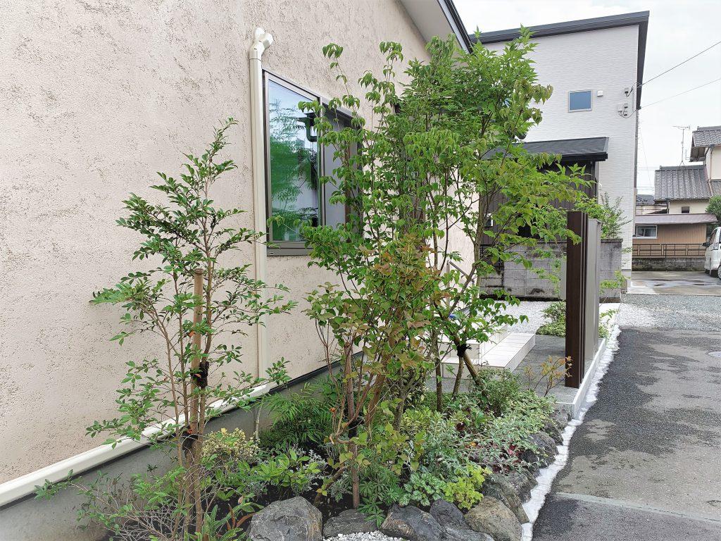 富士市庭づくり