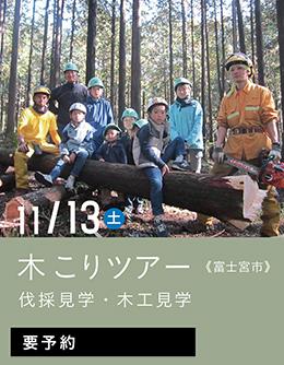 木こりツアー