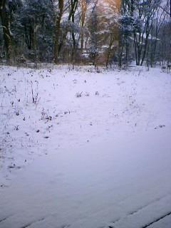 仕事始めと初雪と