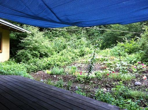 自宅の庭の夏対策:日よけのタープを付けました。