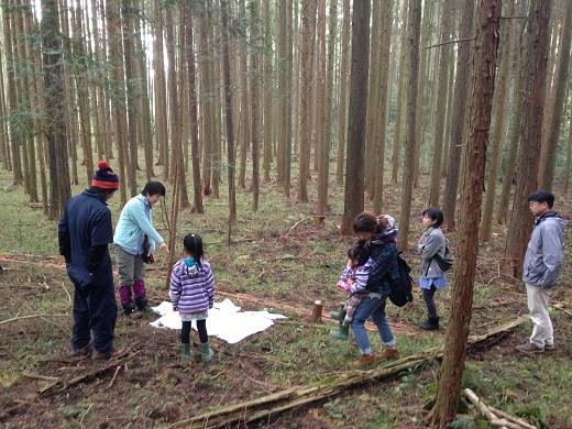 LOHAS里山再生計画:森の学校、楽しかったです。