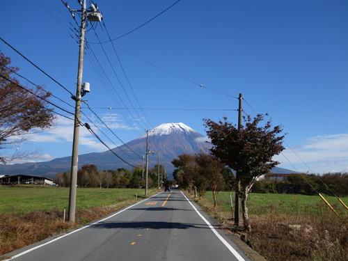 秋晴れを背景に富士山が綺麗でしたね。